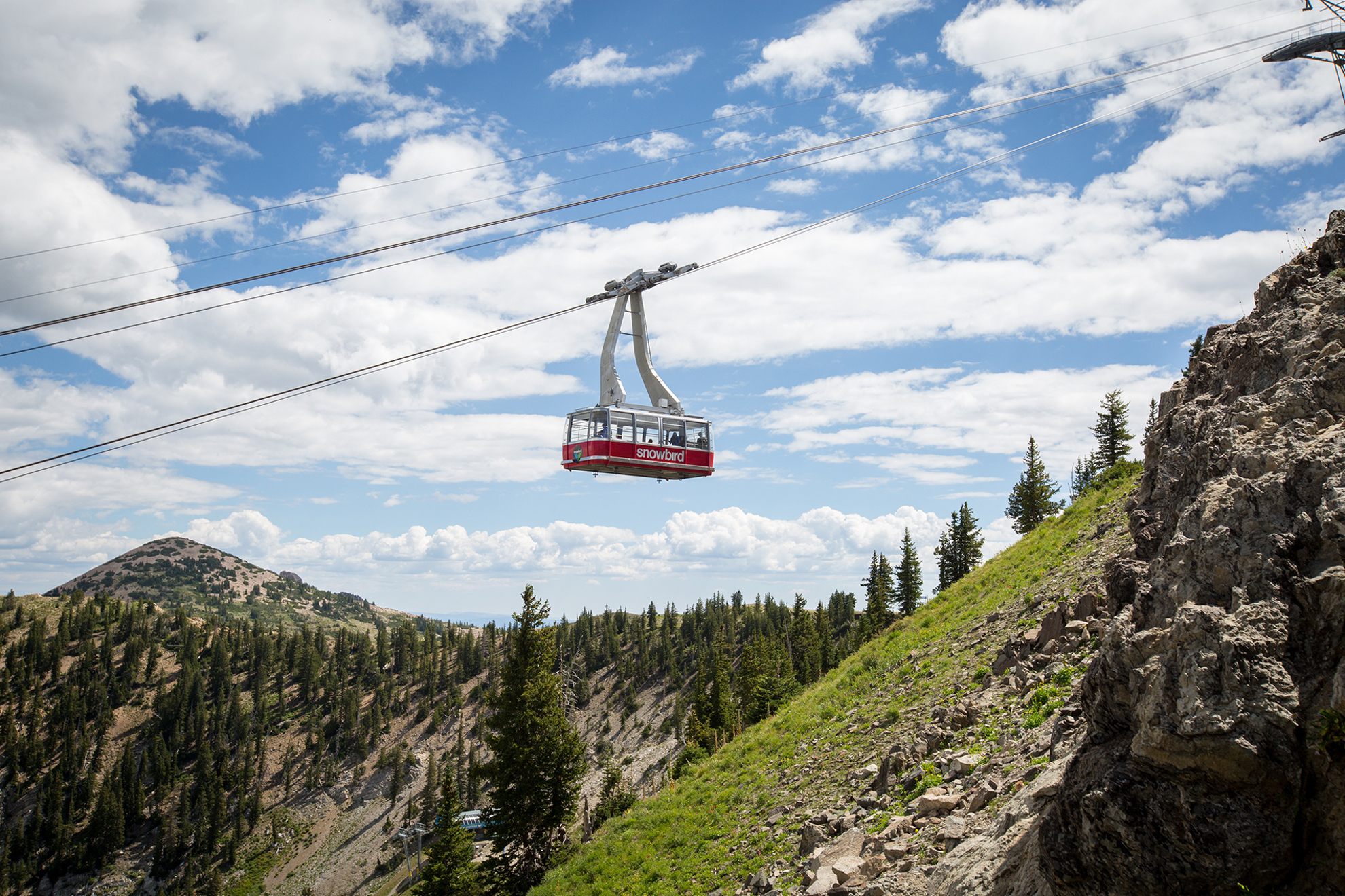 Snowbird Bird Bundle Activity Pass for Tram